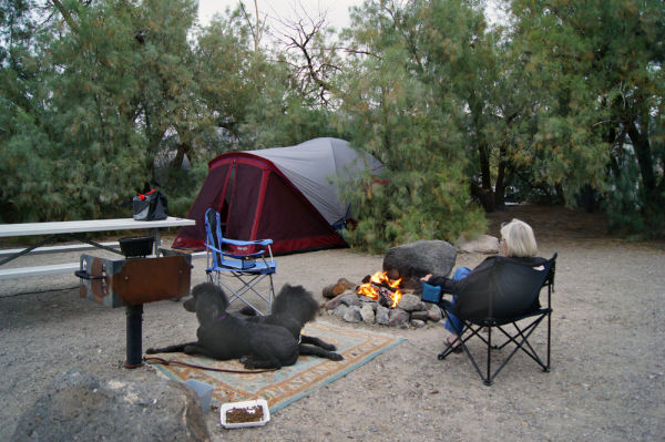 Campground at Furnace Creek, Death Valley, NP