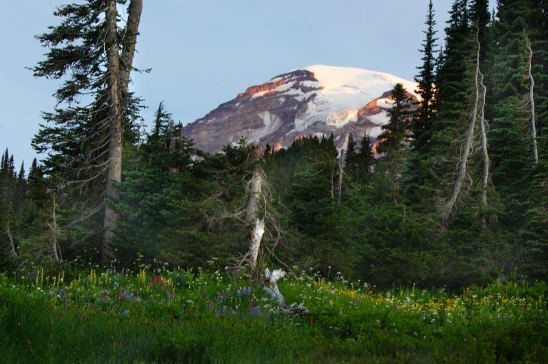 Mt. Rainier VIII