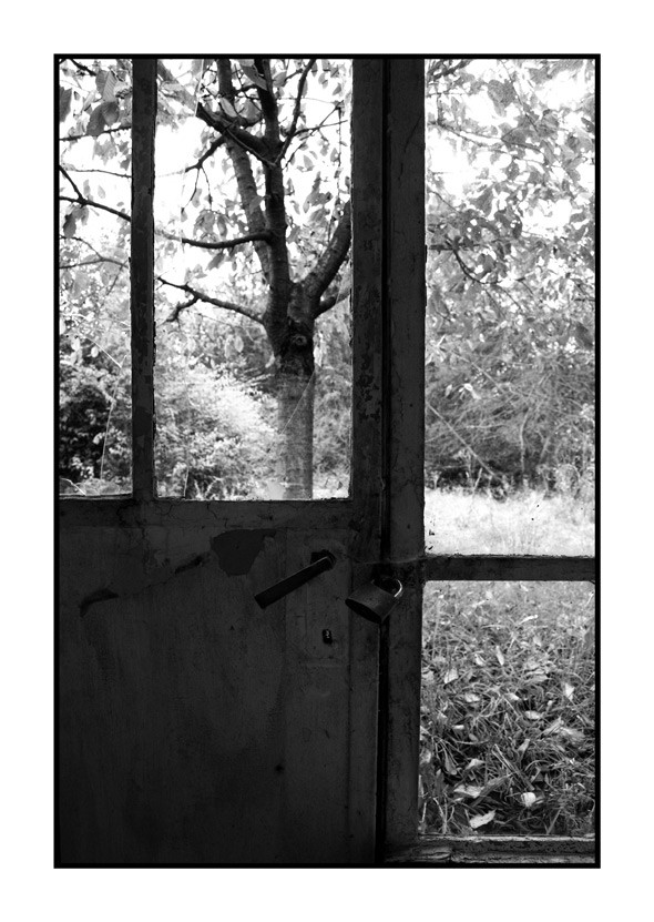 Bierset - View on the garden