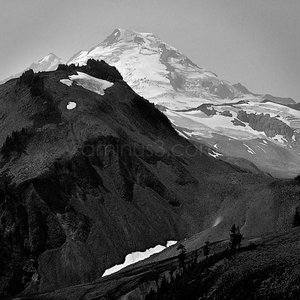Mount Baker from Artist Point