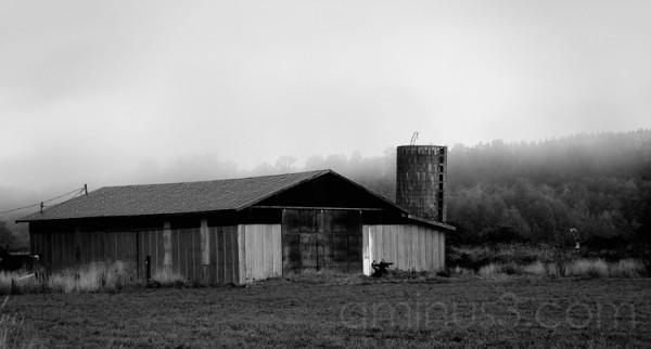 Barn in Western Washington
