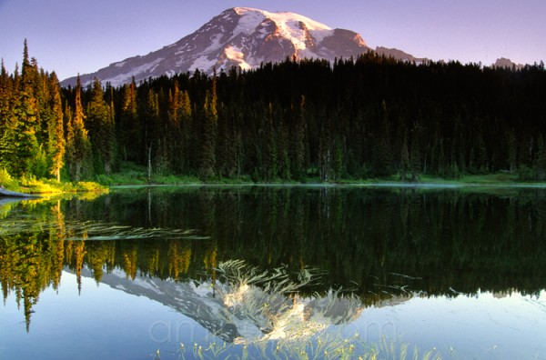 Rainier from Reflection Lakes