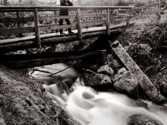 Watching water go under the bridge.
