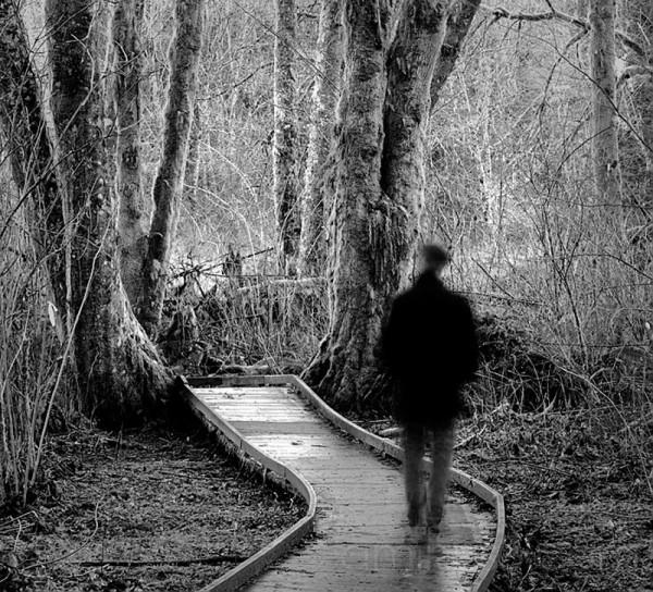 The Wayward Path