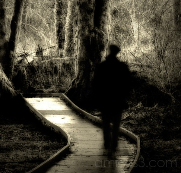 The Wayward Path Redux