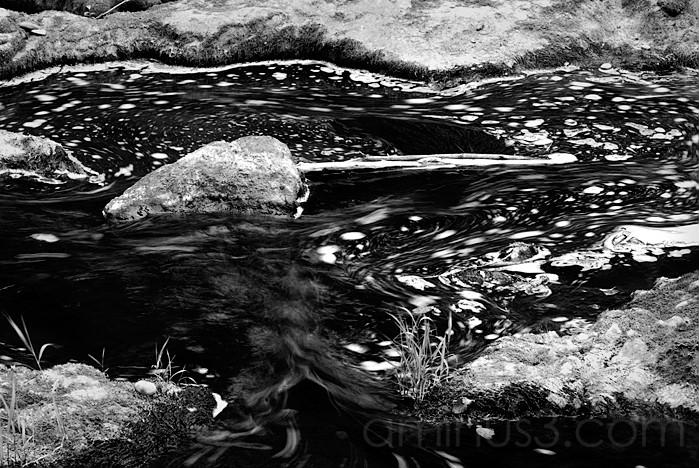 Swirly Pool