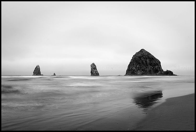 The Quad - Cannon Beach