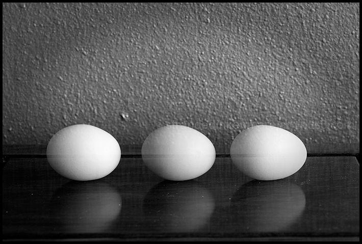 Incredible, Edible Eggs
