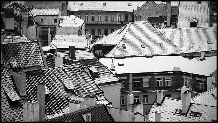 Roofs in Praha