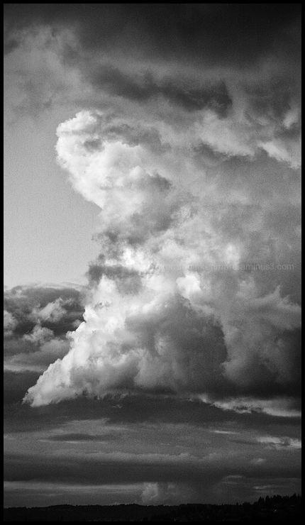 Brewing Storm