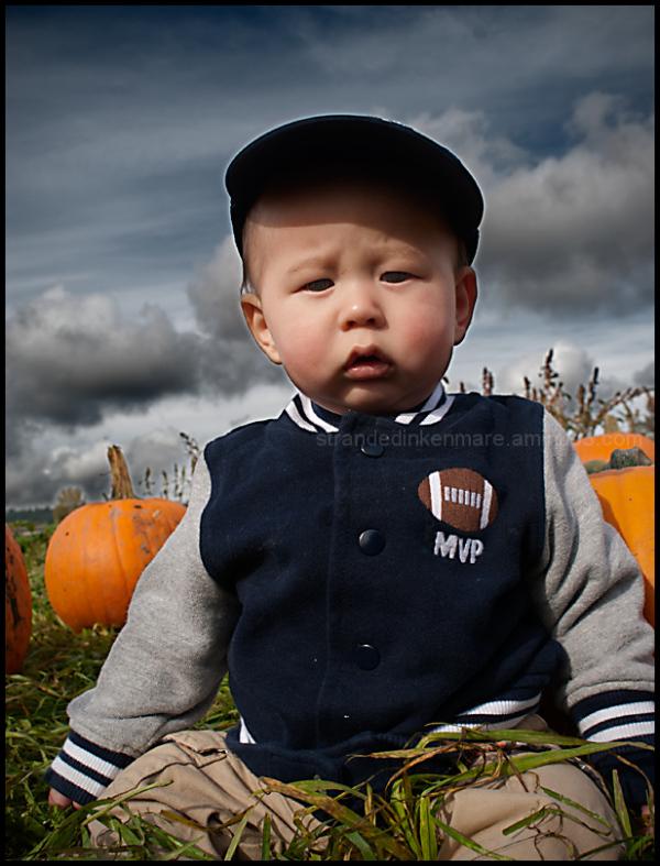 Pumpkin Patch Noir