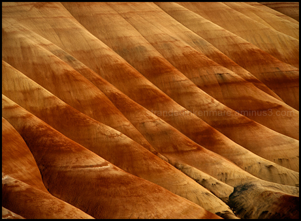 Painted Hills–Folds