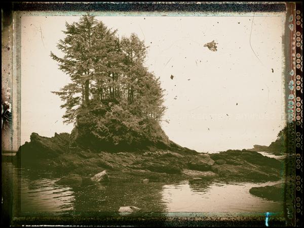 Victoria Vignettes#1: Botany Bay