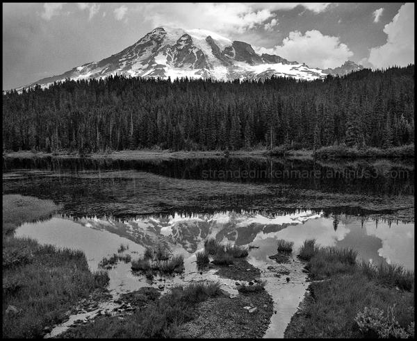 Reflection, Mount Rainier