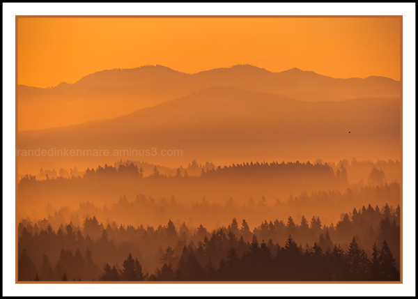 Black Hills - Hazy Sunrise