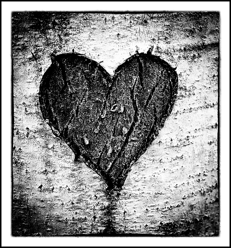 crack heart