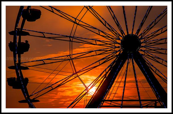 The State Fair