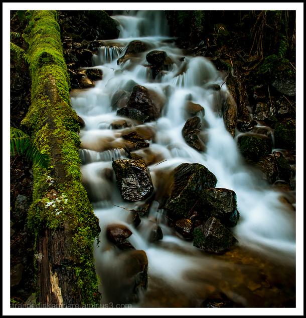 Moulton Falls Adventure