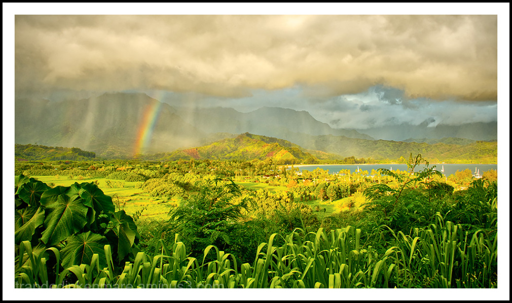 Hanalei Valley & Bay Overlook