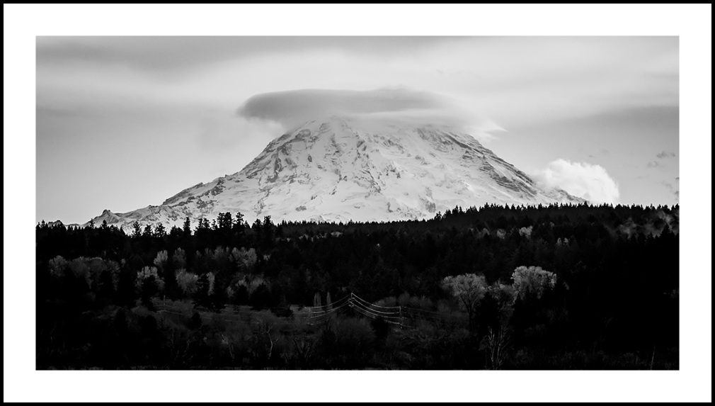 Rainier from Nisqually