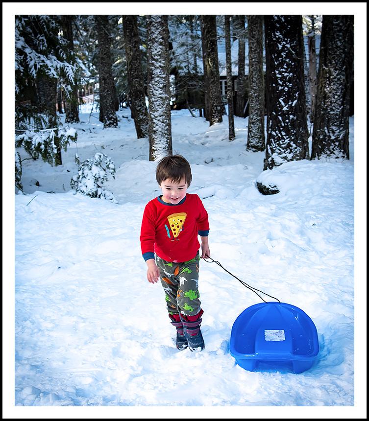 warmblooded sledding maniac