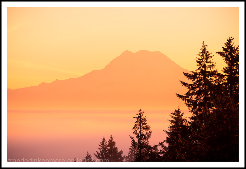 sunrise wide