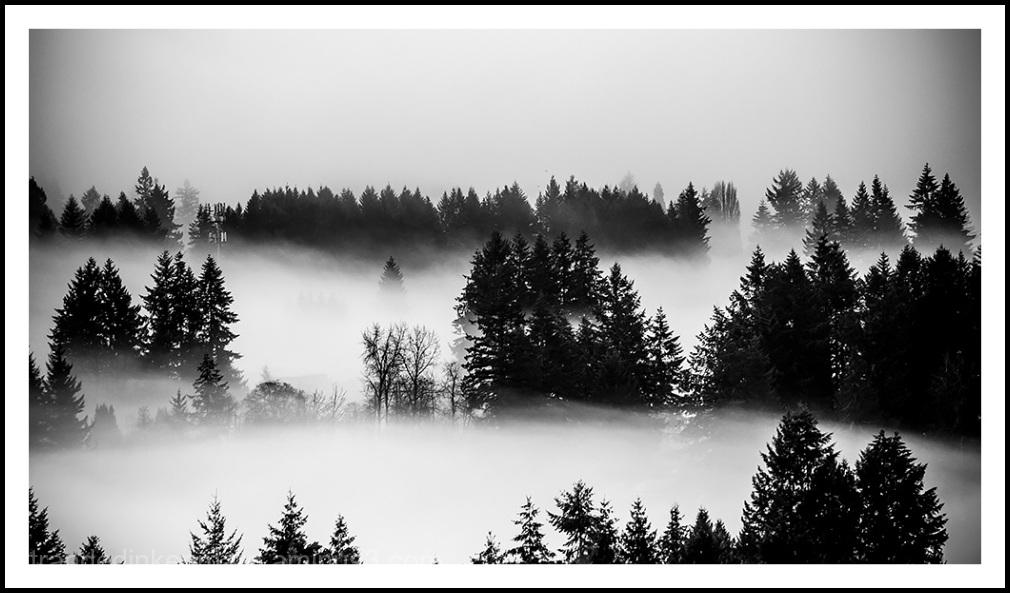 fog rivers
