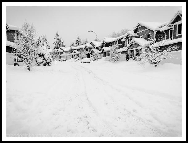 winter wasteland