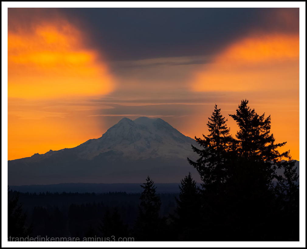 Rainier's Shadow