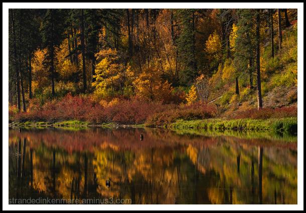 Tumwater Canyon Reflection