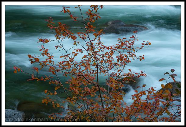 Wanatchee River