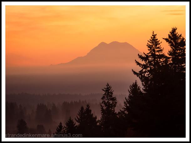 Misty Mountain Morn
