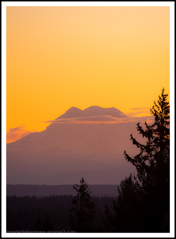 Thankful Sunrise