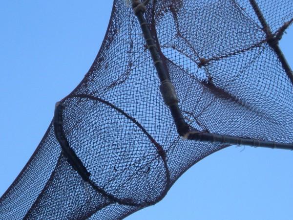 no hay que pescar dos veces con la misma red