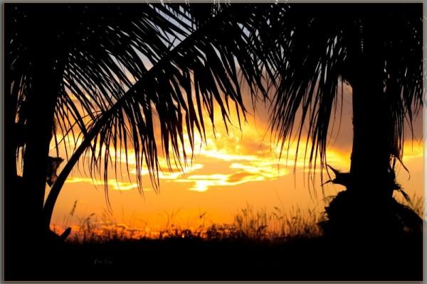 Mad Beach Sunset II