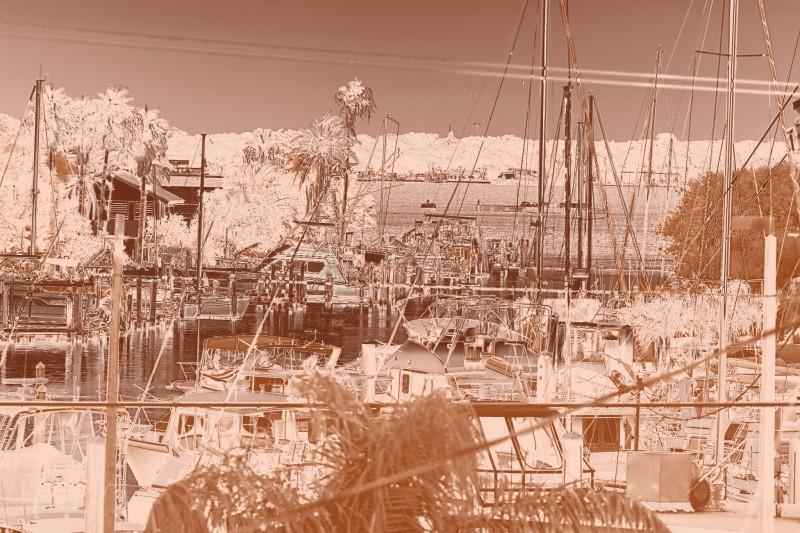 Gradient Harbor