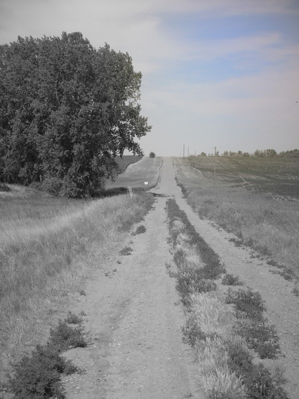 gravel road in south dakota