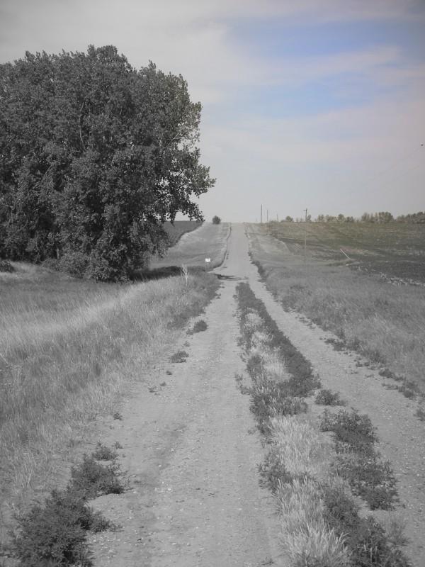 gravel road in south dakota