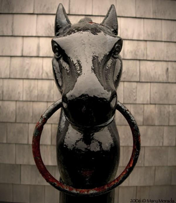 Horse Rail