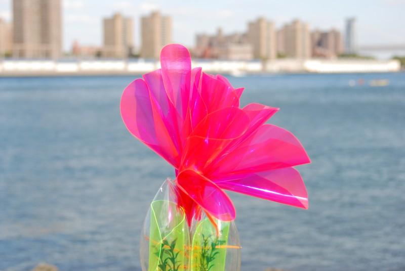 flower at dumbo art festival