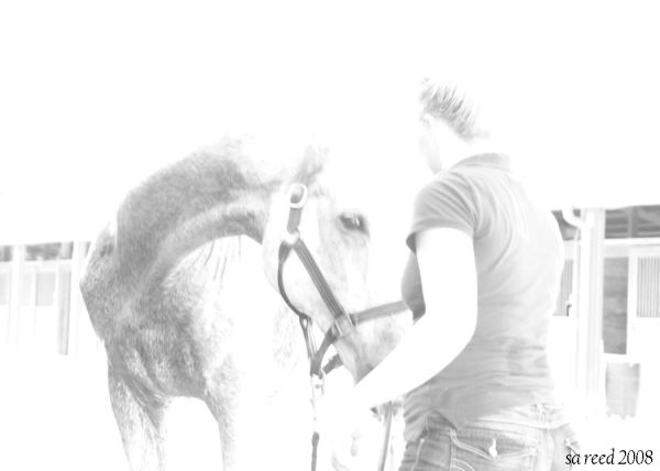 the horse and his girl
