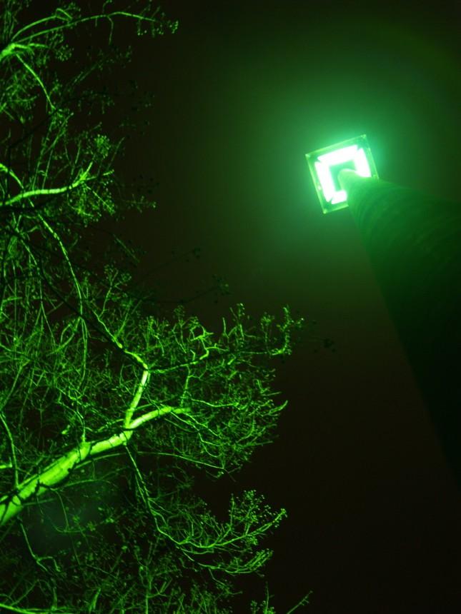 Street Lights on 135