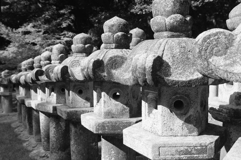 Stone lanterns at Toko-ji.