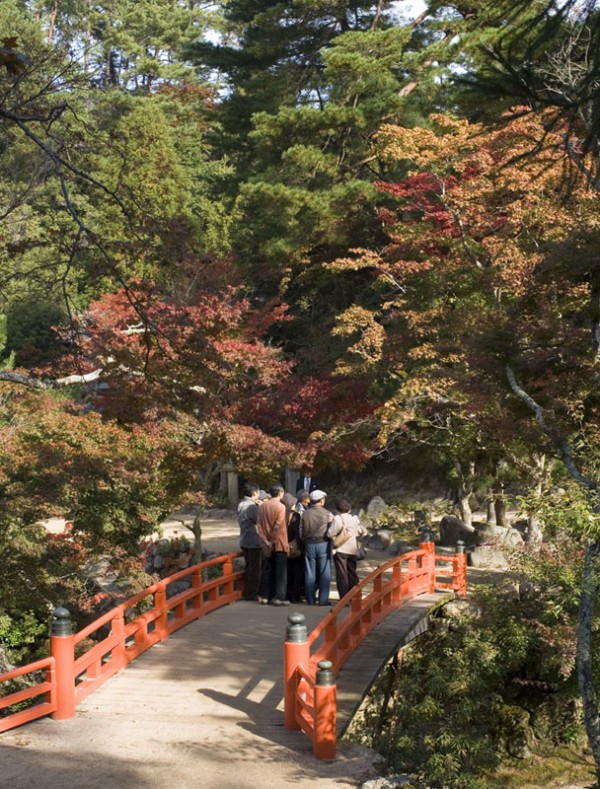 Fall colors at Miyajima.