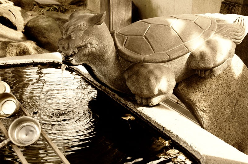 Stone turtle at a temple.