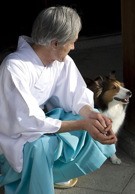 A Shinto priest enjoys a four legged visitor.