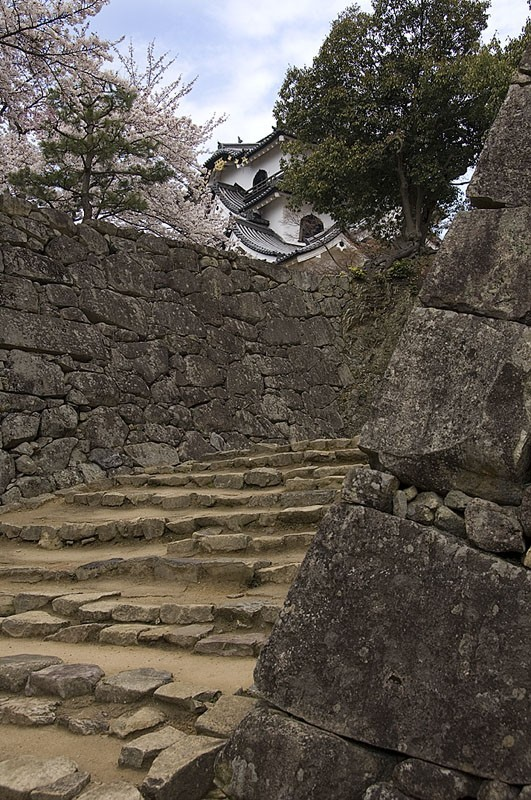 The approach to Hikone castle.