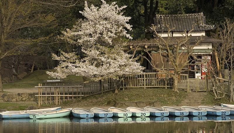 Boats on Sagi Ike.