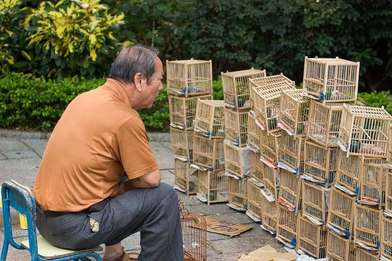 A man selecting a bird.