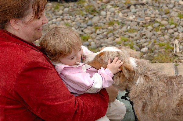 A dog and child are new found friends.